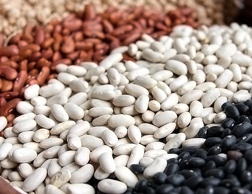 Beans – A Solid Source of Protein, Fiber, & Iron