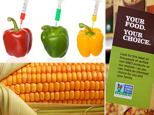 To GMO or Not to GMO? That is the question…