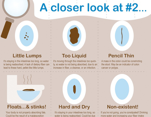 What does your poop mean?