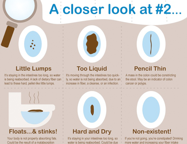 What Does Your Poop Mean